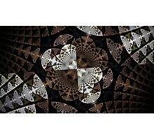 Fine Lace Photographic Print