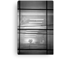 OnePhotoPerDay Series: 343 by L. Canvas Print