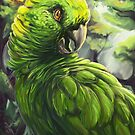 Amazon Parrot by Fable