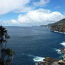 Devils View - Devils Kitchen, Tasmania by RainbowWomanTas