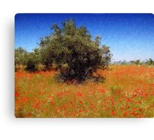 Olive Trees and Poppies Canvas Print
