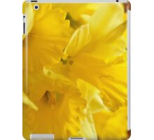 Daffodils, As Is iPad Case/Skin