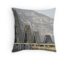 The beauty in engineering Throw Pillow