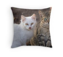 Two Little Kittens Throw Pillow