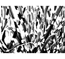 Abstract in b/w Photographic Print