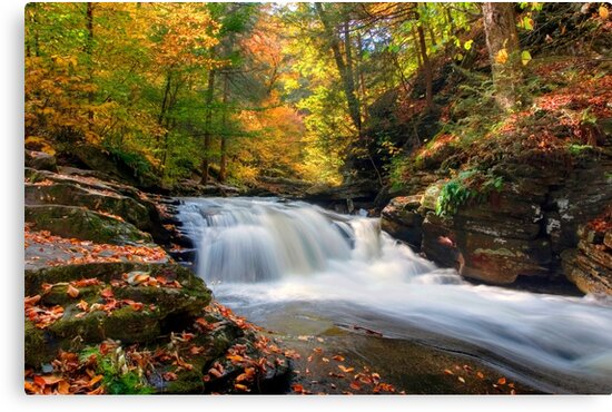 Conestoga Falls On Kitchen Creek in the Fall by Gene Walls
