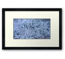 A Winters Morning Framed Print