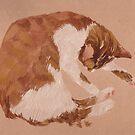 round cat by noirL