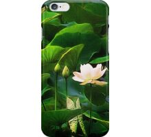 Edible Enchantment iPhone Case/Skin
