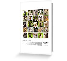 Best Friends Rescue 2011 Greeting Card