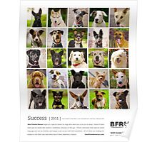 Best Friends Rescue 2011 Poster
