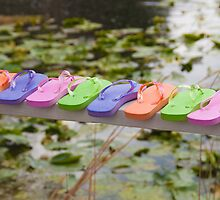 """On The Edge"" - Flip Flops all lined up by John Hartung"
