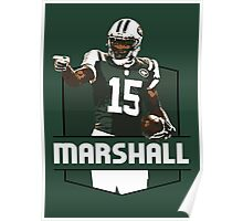 Brandon Marshall - New York Jets Poster