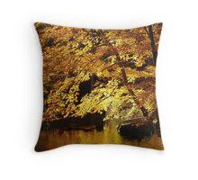Fall Blaze Throw Pillow