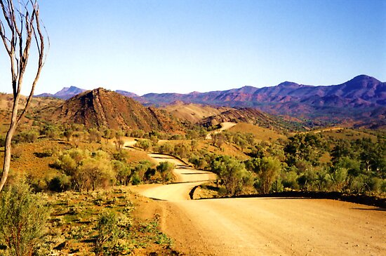 Winding through the Flinders Ranges by Michael Vickery