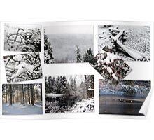 Washington Winter Poster