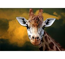 """Mr Giraffe..."" Photographic Print"