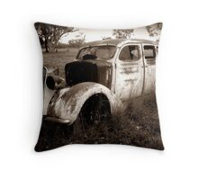 Lots of rust and two emus Throw Pillow