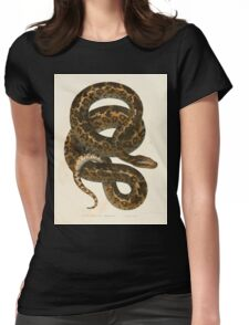Joseph Fitzinger 1867 0101 Picture Atlas for popular scientific natural history of vertebrates Womens Fitted T-Shirt