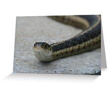 Slippery Greeting Card