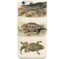 Joseph Fitzinger 1867 0043 Picture Atlas for popular scientific natural history of vertebrates iPhone Case/Skin