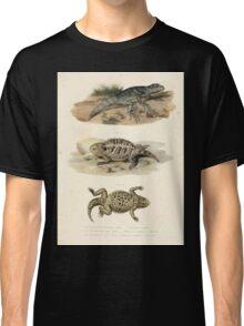 Joseph Fitzinger 1867 0043 Picture Atlas for popular scientific natural history of vertebrates Classic T-Shirt