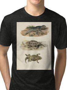 Joseph Fitzinger 1867 0043 Picture Atlas for popular scientific natural history of vertebrates Tri-blend T-Shirt