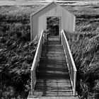 Alviso Park. A Gate to the Bay. Alviso, California 2010  by Igor Pozdnyakov