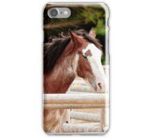Pair of Draft Horses iPhone Case/Skin