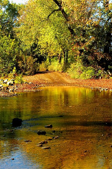 Ozark Stream Crossing by NatureGreeting Cards ©ccwri