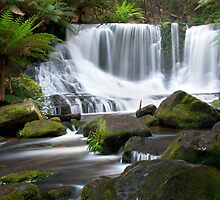 As the water flows - Horseshoe Falls by lee Henley