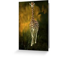 """Elegant and Graceful ..."" Greeting Card"