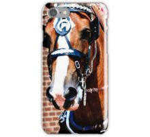 Belgian Show Horse iPhone Case/Skin