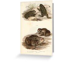 Joseph Fitzinger 1867 0201 Picture Atlas for popular scientific natural history of vertebrates Greeting Card