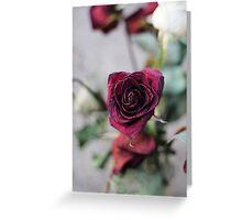 Wilted Petal Greeting Card