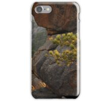 up in the Rockies iPhone Case/Skin