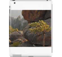 up in the Rockies iPad Case/Skin
