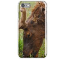 that's a mouthful iPhone Case/Skin