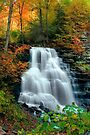 October Foliage Surrounding Erie Falls by Gene Walls