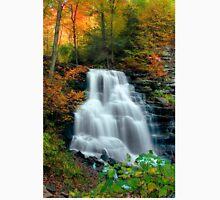 October Foliage Surrounding Erie Falls Unisex T-Shirt