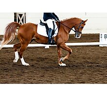 Horse Show Dressage Photographic Print