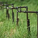 On Tap by JustineEB