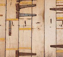 Yellow door, Cochin by Syd Winer