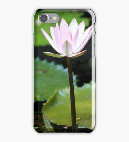 A Flower From the Water iPhone Case/Skin