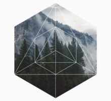 Geometric Forest by Kyle Everts