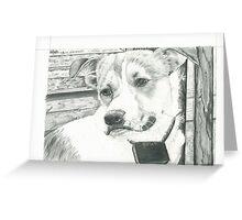 Bella,  the Beautiful Greeting Card