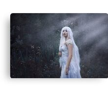 Forgotten song of the fairies Canvas Print