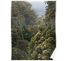 Coomera gorge Poster