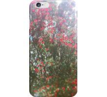 Pohutukawa in Full Blossom iPhone Case/Skin