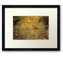 """a Vintage View from Wellington Zoo ..."" Framed Print"